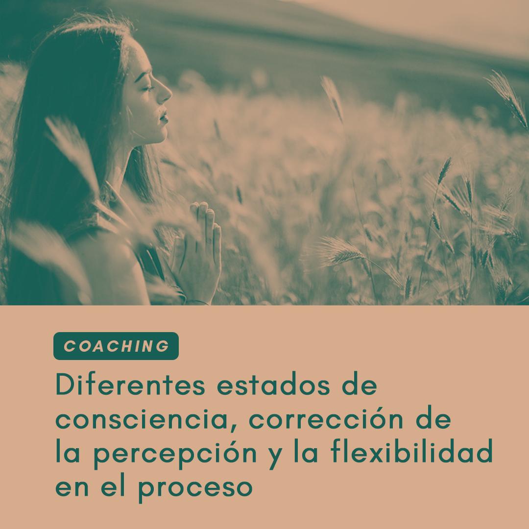 Coaching: diferentes estados de consciencia, corrección de la percepción y la flexibilidad en el proceso